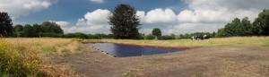Primeur in Nederland, Solarwatt glas-glas zonnepanelen onder het maaiveld in Hulshorst bij Harderwijk.